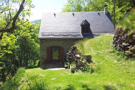 Maison de montagne au coeur de la nature - Cierp-Gaud
