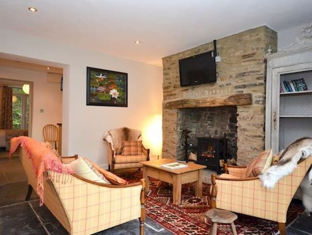 Lily Pad Cottage - Okehampton - House