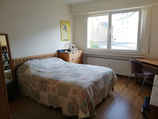 Cosy double room in large flat near train station
