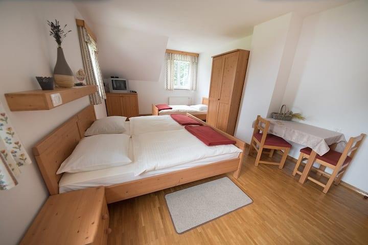 Triple room on the Tourist farm Pr'Dovar