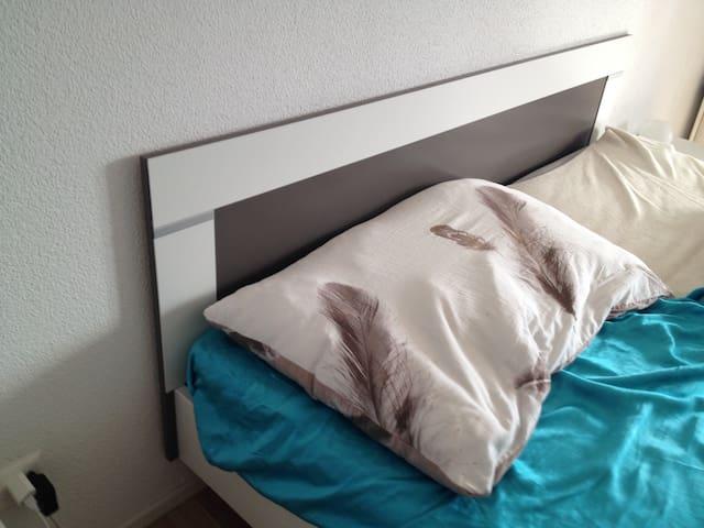 schönes Zimmer in grosser Wohnung - Beringen