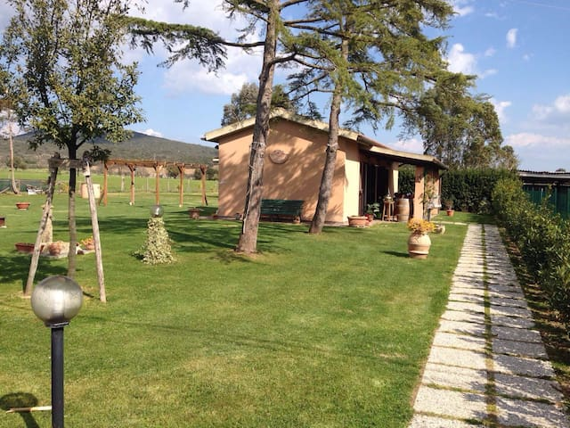 Incantevole casina in campagna - Grosseto - House