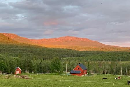 Engstad Farm, Ogndal