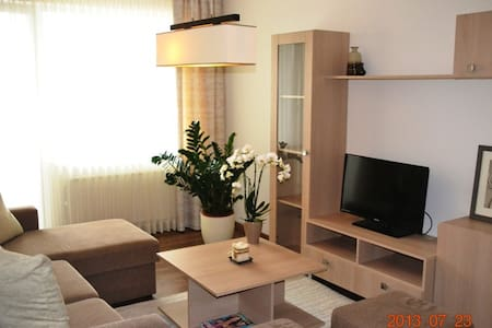 Apartaments Dainų Street