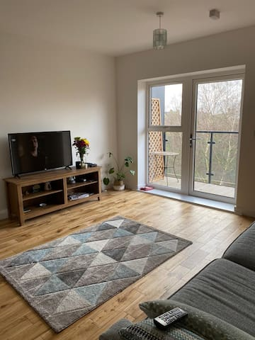 1 bedroom apartment with Balcony in Wandsworth