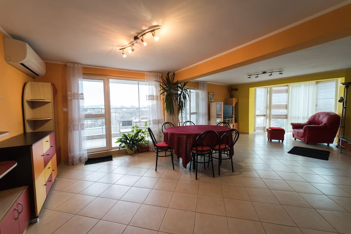 Spacious apartment in Sofia with amazing view
