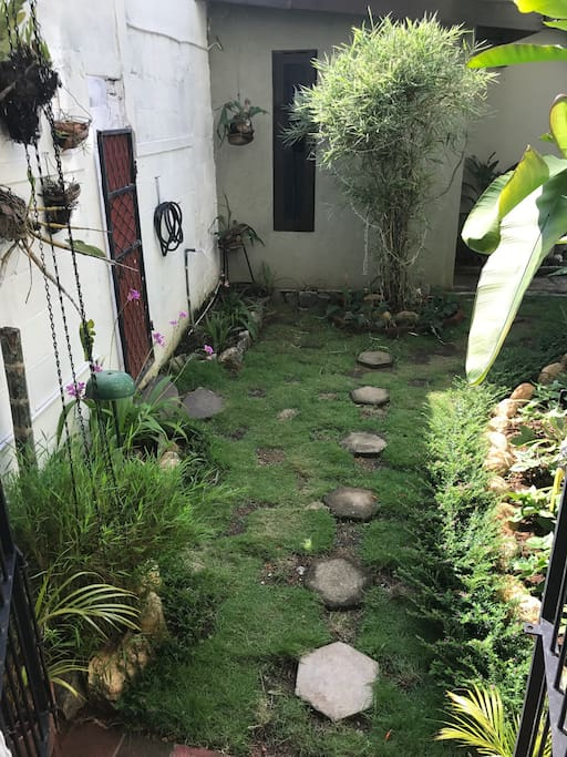 Small garden at the back!