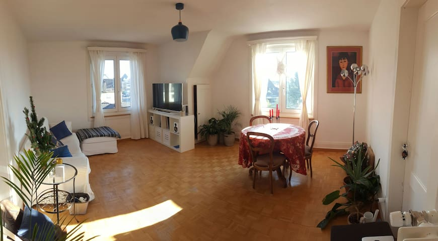 Cosy top floor 3-bedroom with lovely lake views - Meilen - Apartment