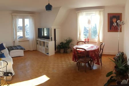 Cosy top floor 3-bedroom with lovely lake views - Meilen - Apartament