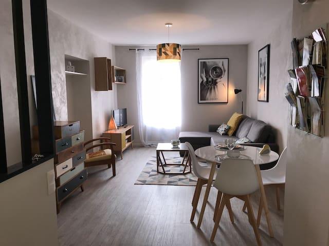 Appartement Contemporain Pont Vieux