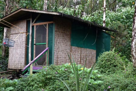 Eclectic executive jungle cabin - Pāhoa