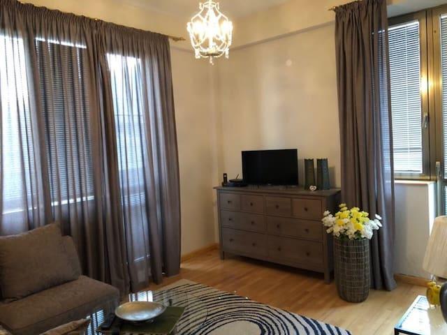 Cozy apartment/Tbilisi centre