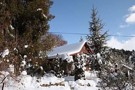 Домик на природе в Неве-Атив. Гора Хермон. - Neve Ativ