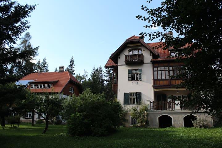 Villa Glauber - appartamento Mahler