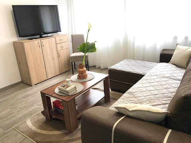 Apartman Petkovic I