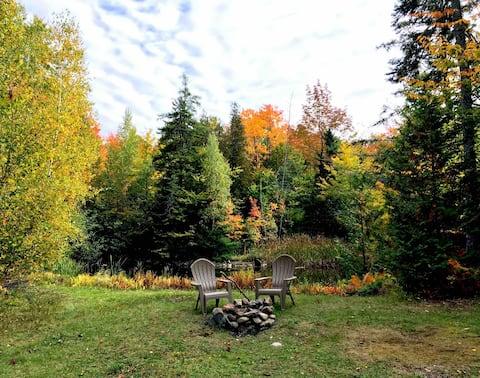 Quiet, cozy central Maine cabin