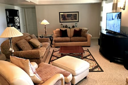 Spacious & Light Filled Lower Level near Downtown