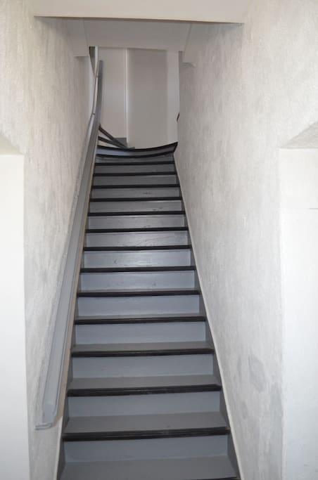 Escalier commun