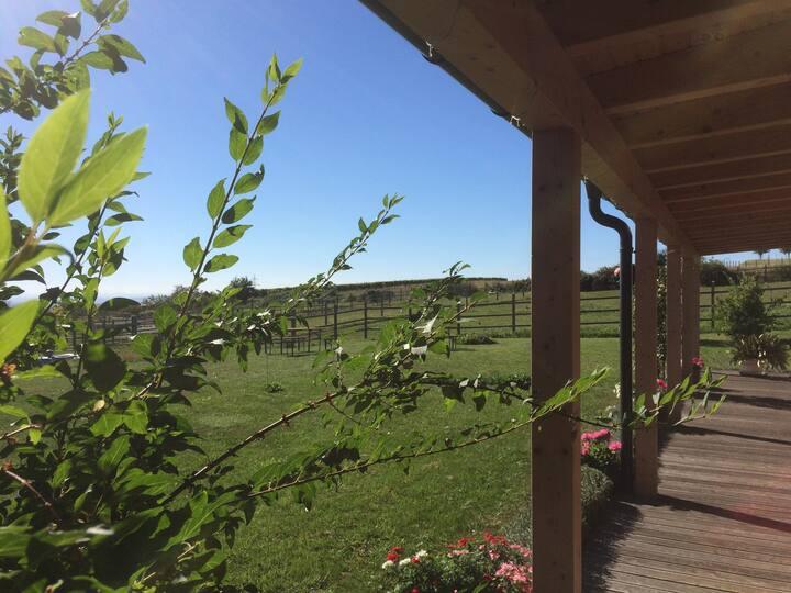 Auszeit - mitten in Weinbergen und Natur
