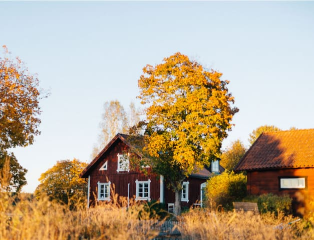 Cosy and comfy cottage, pool and constant safaris! - Lästringe - Cottage