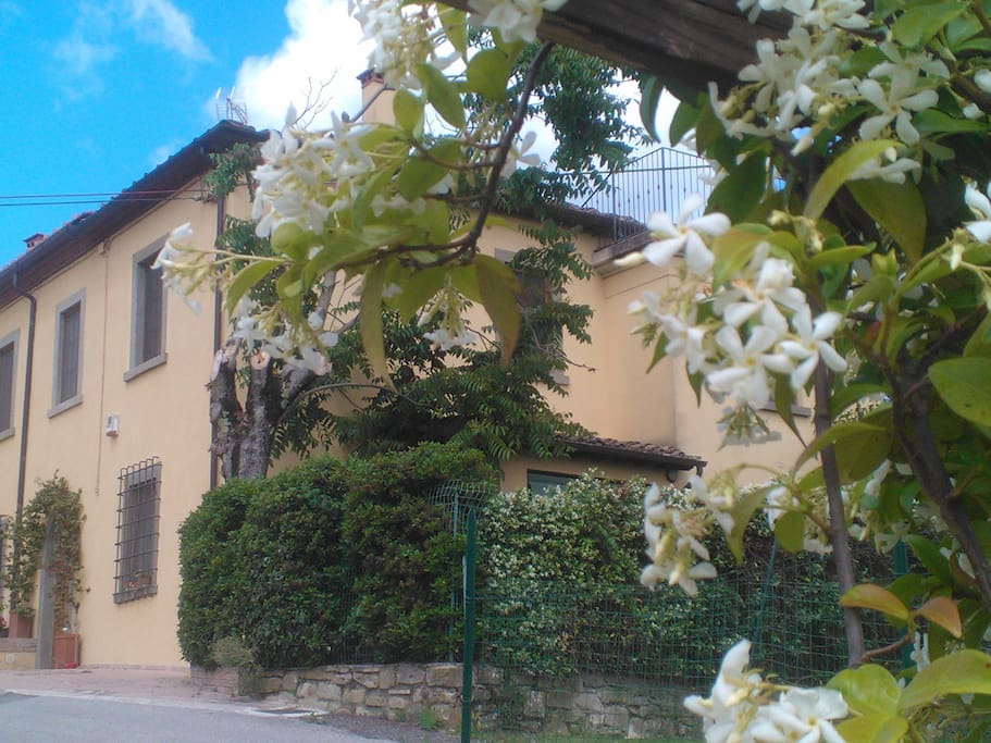 Mirjam's Home