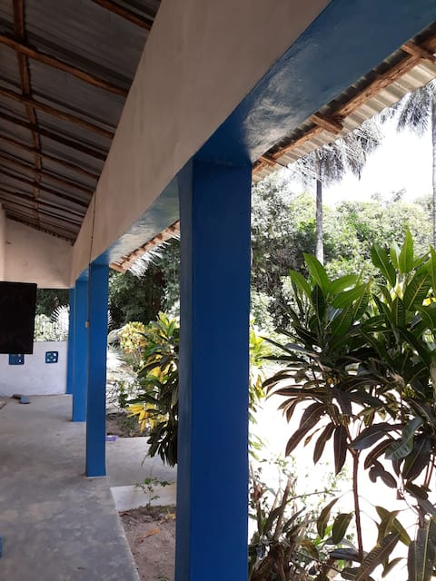 Lugnt strandnära ekologiskt boende under palmer
