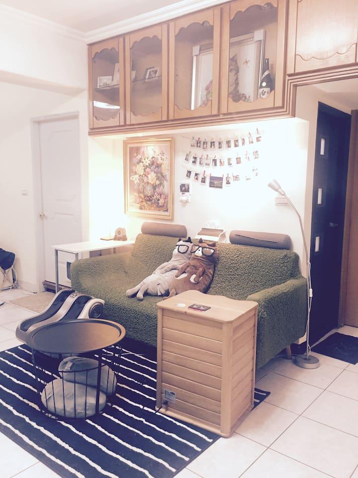 Living room共用客廳