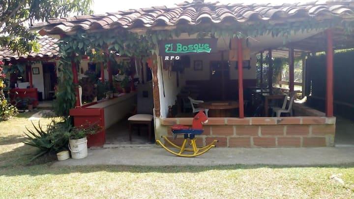 El Bosque RPO. Támesis, Antioquia.