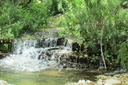 Utopia Springs~ Private Live Spring on the Sabinal - Vanderpool - Casa