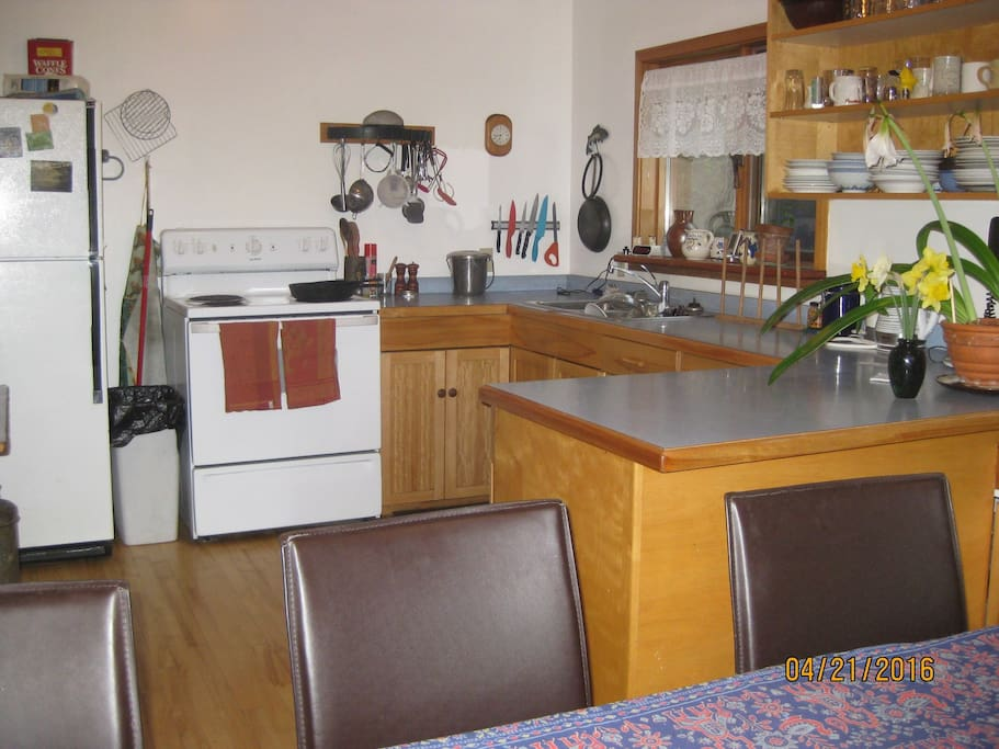 kitchen shared with host