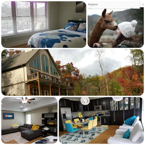 Luxury Mountain Hideout! Wineries, Hike, Relax!