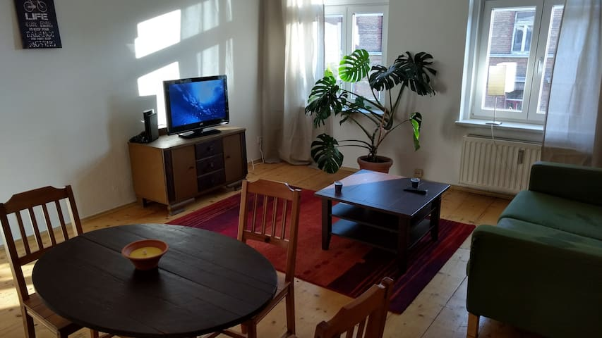 beautifull apartment 5 tram minutes from centre - Leipzig - Daire