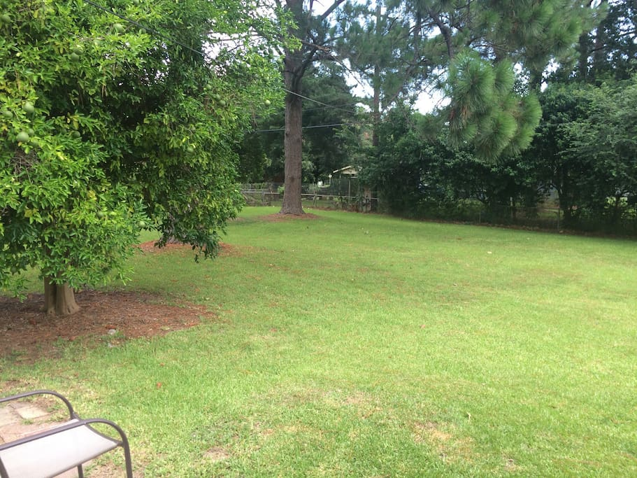 Large fenced in back yard.