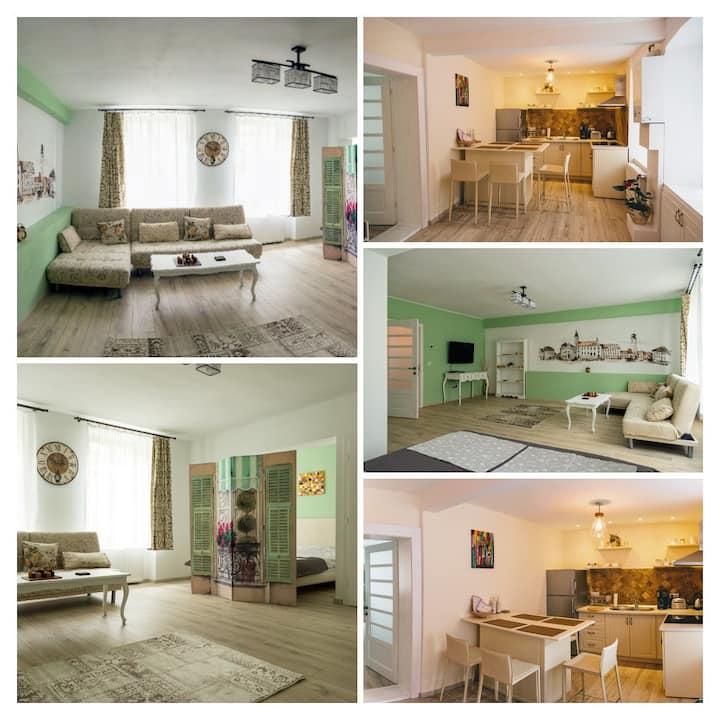 Vintage Central Apartment Sibiu