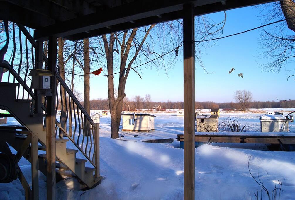 Vue sur le fleuve - en hiver / Water front - winter time
