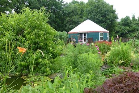 Elegant and Unique Garden Yurt