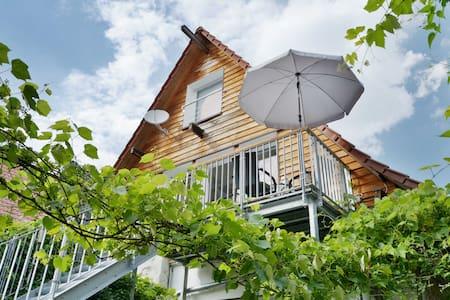 Weinberge, Natur,Weingarten und Umgebung entdecken