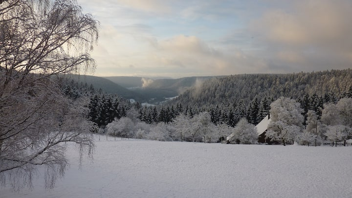 Black Forest Appartment with a beautiful view