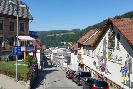 Neue Ferienwohnung im Herzen Tribergs