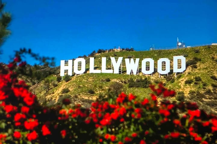 Our Home is about 20 minutes drive from Heart Of Hollywood