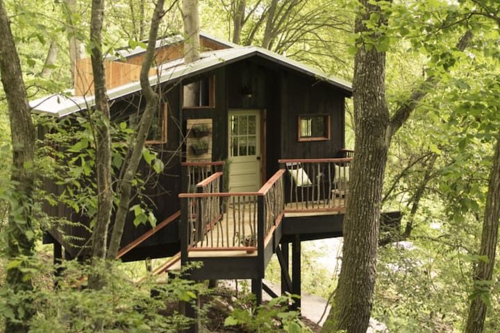Treetop Hideaways: The Elements Treehouse