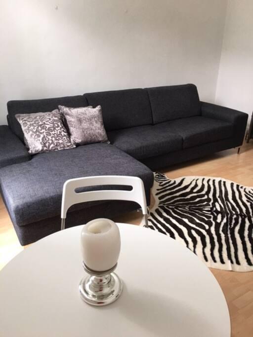 Comfy modern sofa and furnishings