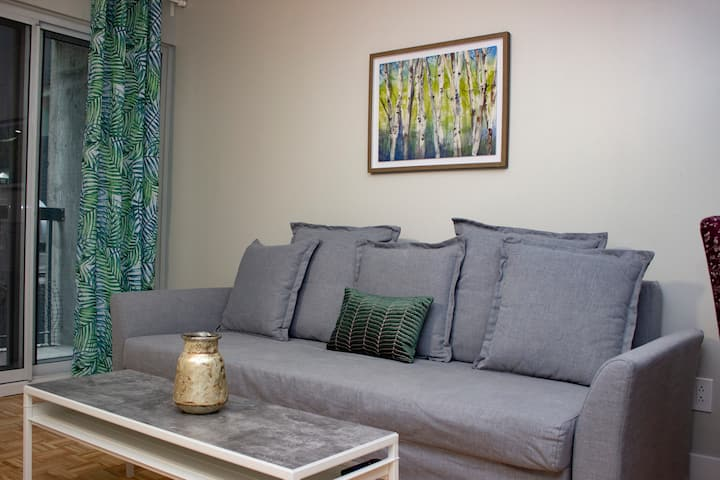 Sparkling Clean Condo In Montreal Downtown / Metro
