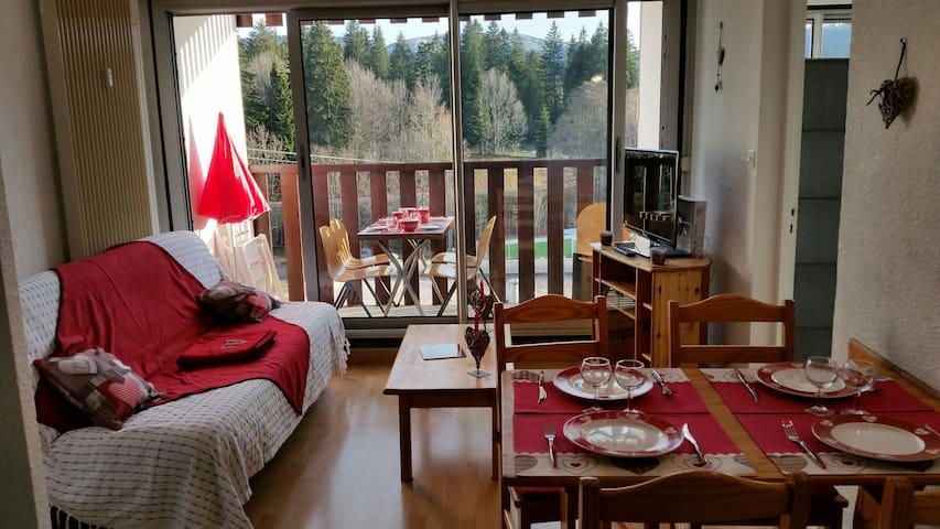 Joli appartement ensoleillé aux rousses - les rousses - Appartement