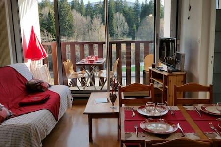 Joli appartement ensoleillé aux rousses - les rousses - Flat