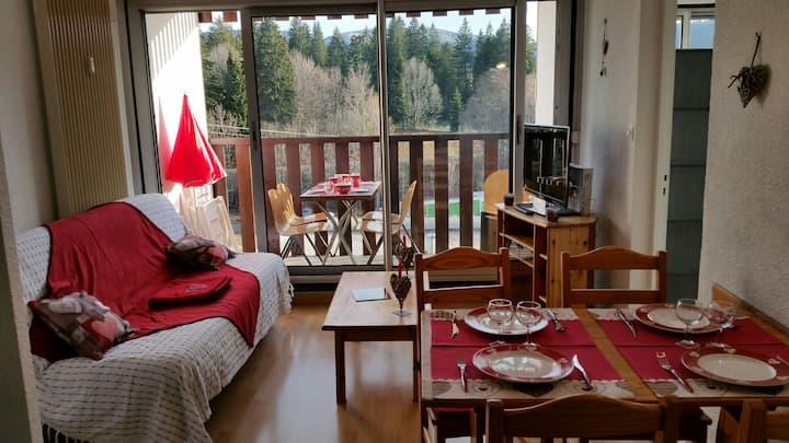 Joli appartement ensoleillé aux rousses