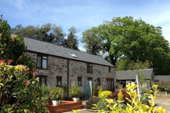 Petrock Holiday Cottages - Motte Cottage - Newton Saint Petrock - House
