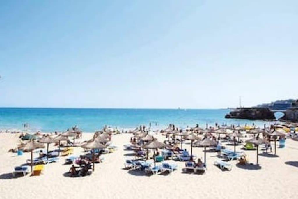 Beach Cala Mayor