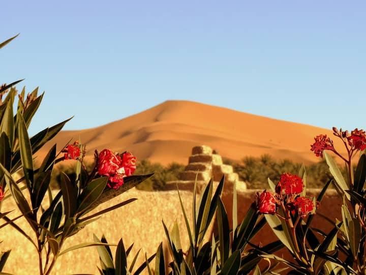 La Vallée des Dunes - Chambre twin