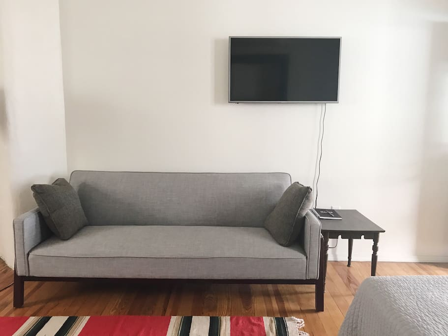 Pull out sofa and flat screen tv